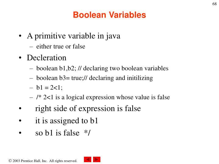 Boolean Variables