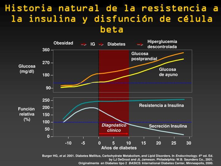 Historia natural de la resistencia a la insulina y disfunción de célula beta