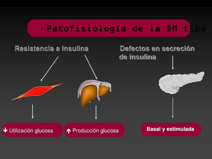 Patofisiología de la DM tipo 2
