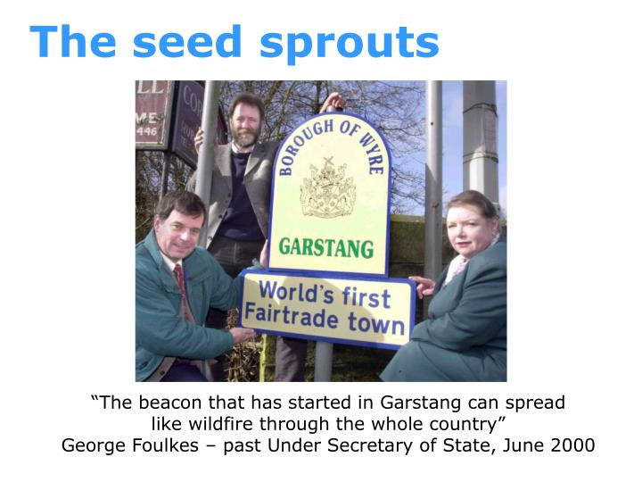 The seed sprouts