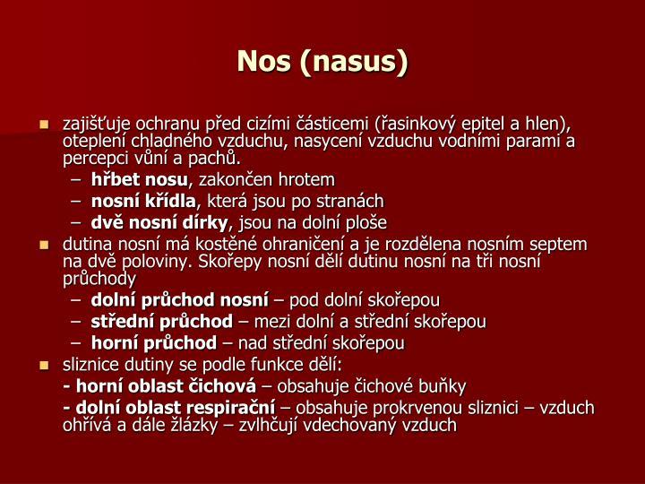 Nos (nasus)