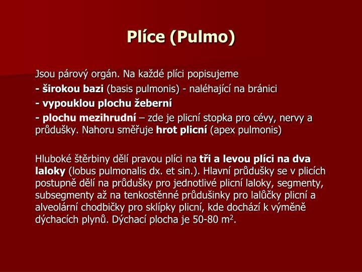 Plíce (Pulmo)