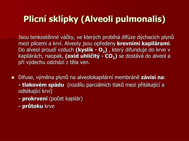 Plicní sklípky (Alveoli pulmonalis)