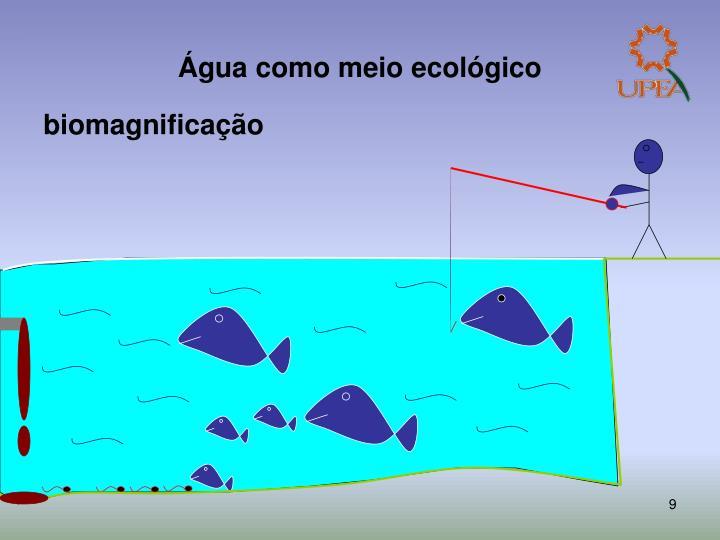 Água como meio ecológico