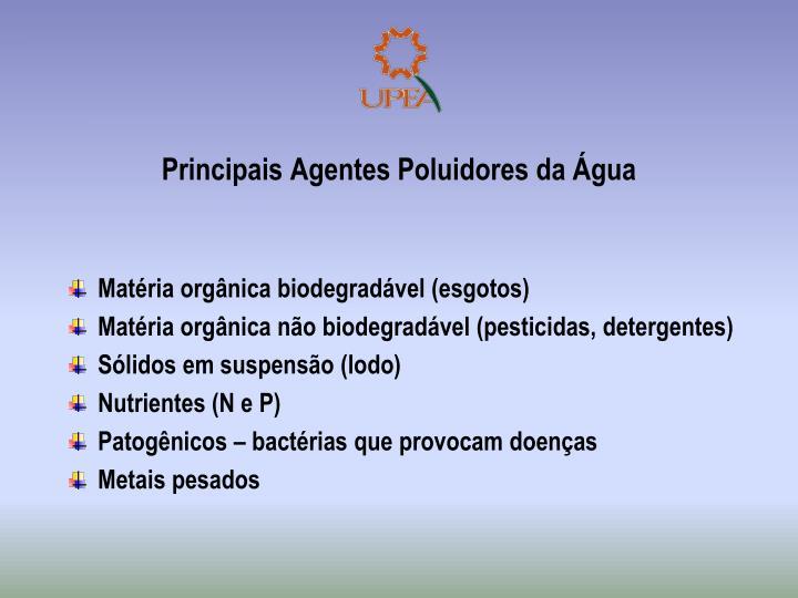 Principais Agentes Poluidores da Água