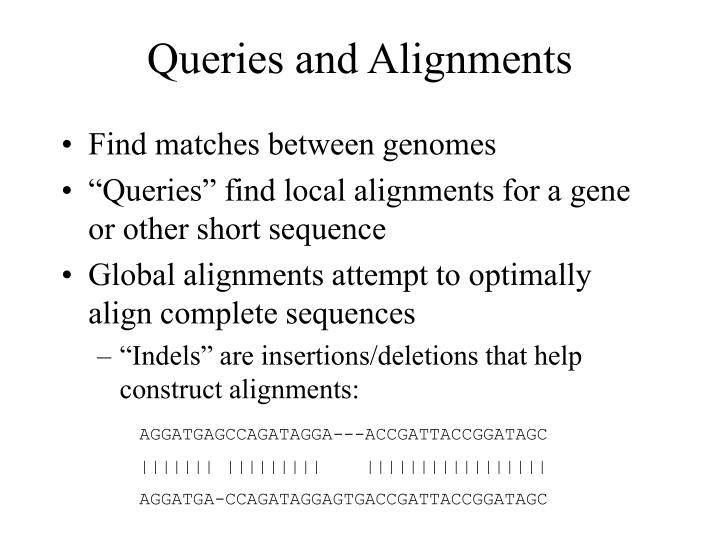 Queries and Alignments