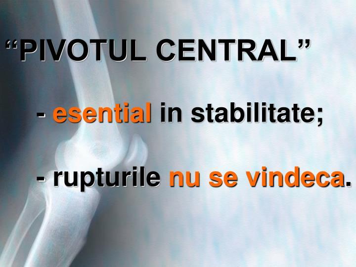 """""""PIVOTUL CENTRAL"""""""