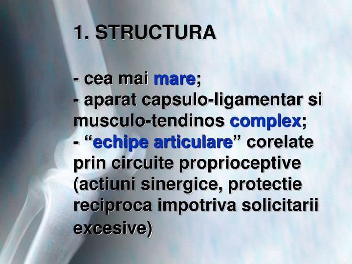 1. STRUCTURA