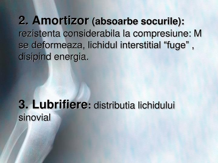 2. Amortizor