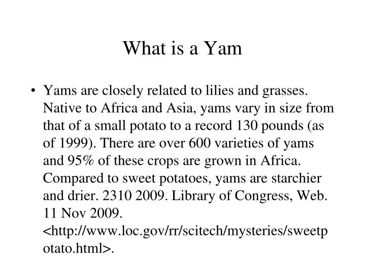 What is a Yam