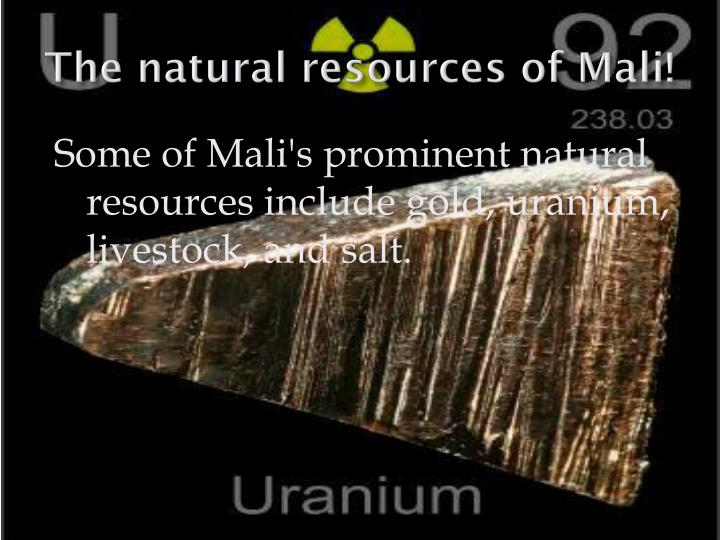 The natural resources of Mali!