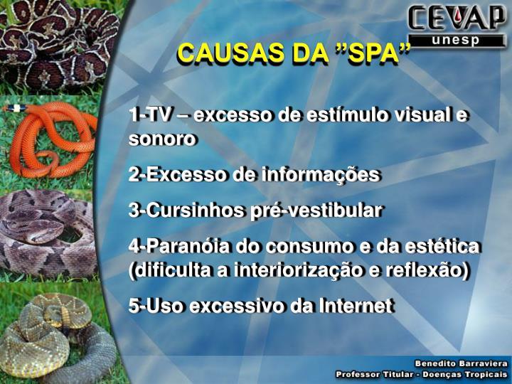 """CAUSAS DA """"SPA"""""""