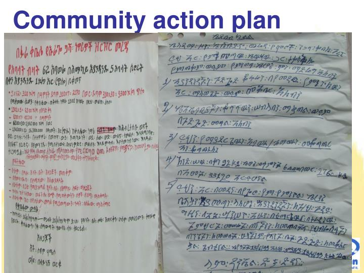 Community action plan