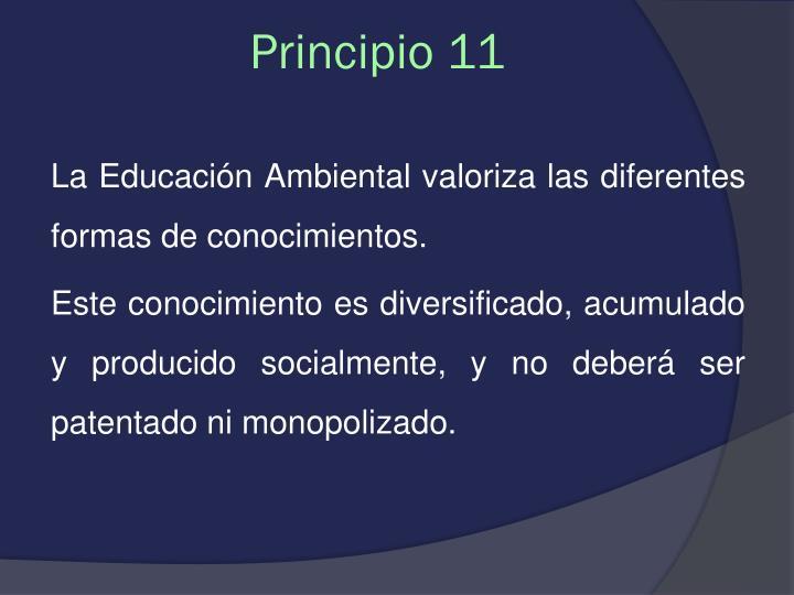 Principio 11