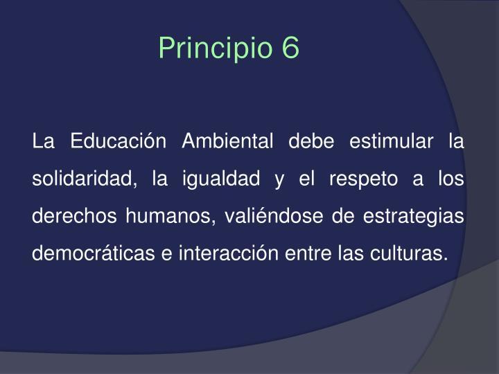 Principio 6