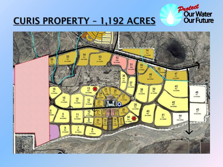 CURIS PROPERTY – 1,192 ACRES