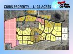 curis property 1 192 acres