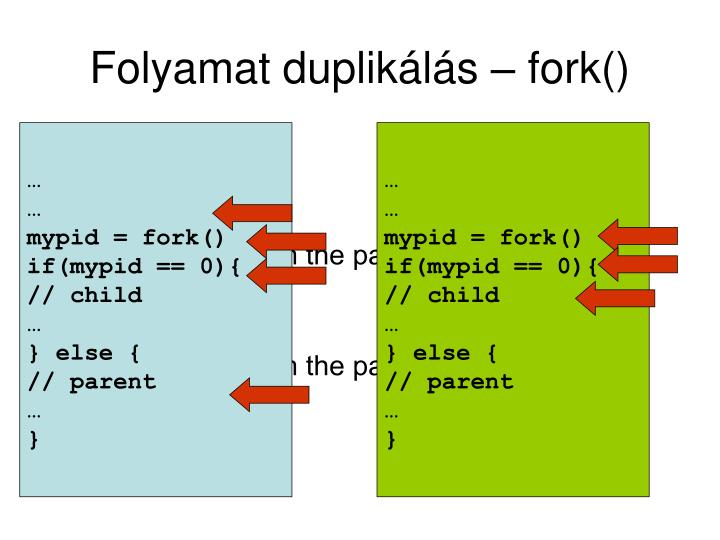 Folyamat duplikálás – fork()