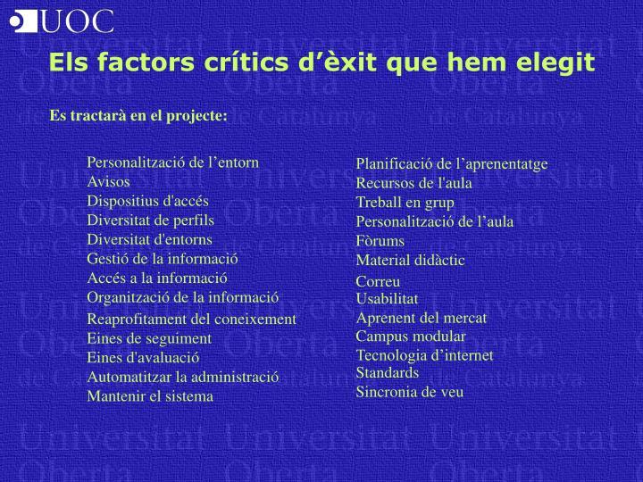 Els factors crítics d'èxit que hem elegit