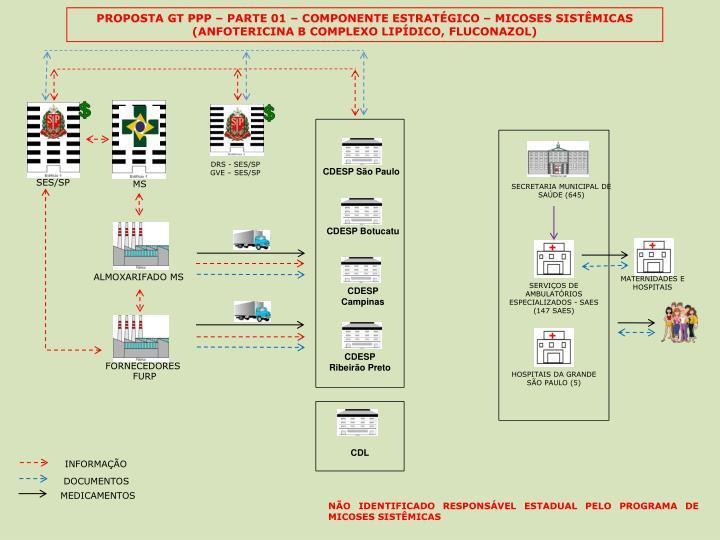 PROPOSTA GT PPP  PARTE 01  COMPONENTE ESTRATGICO  MICOSES SISTMICAS (ANFOTERICINA B COMPLEXO LIPDICO, FLUCONAZOL)