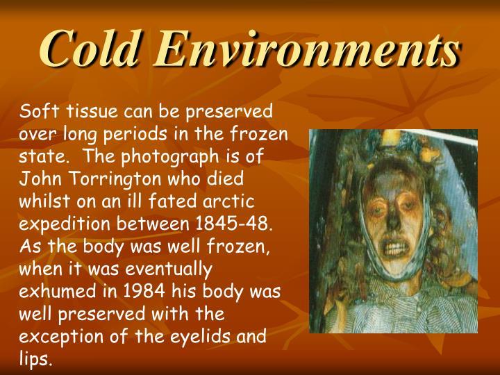 Cold Environments
