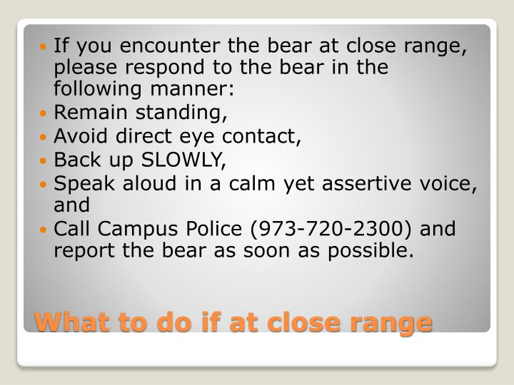 If you encounter the bear at close range, please respond to the bear in the following manner: