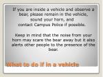 what to do if in a vehicle