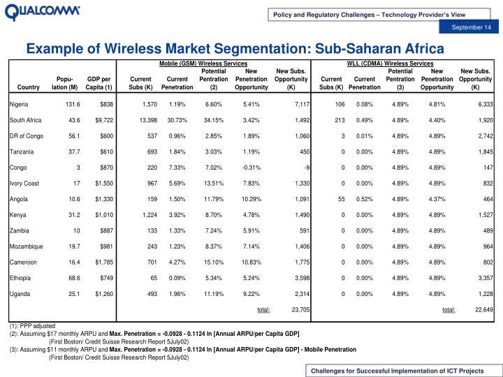 Example of Wireless Market Segmentation: Sub-Saharan Africa