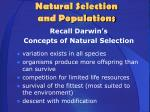 natural selection and populations