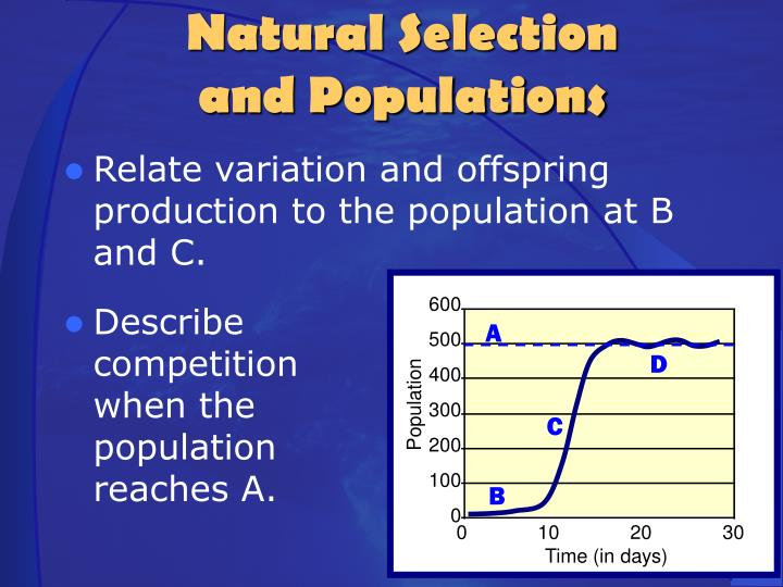 Relate variation and offspring production to the population at B and C.