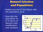 natural selection and populations2