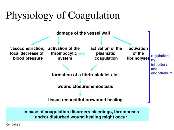 Physiology of Coagulation