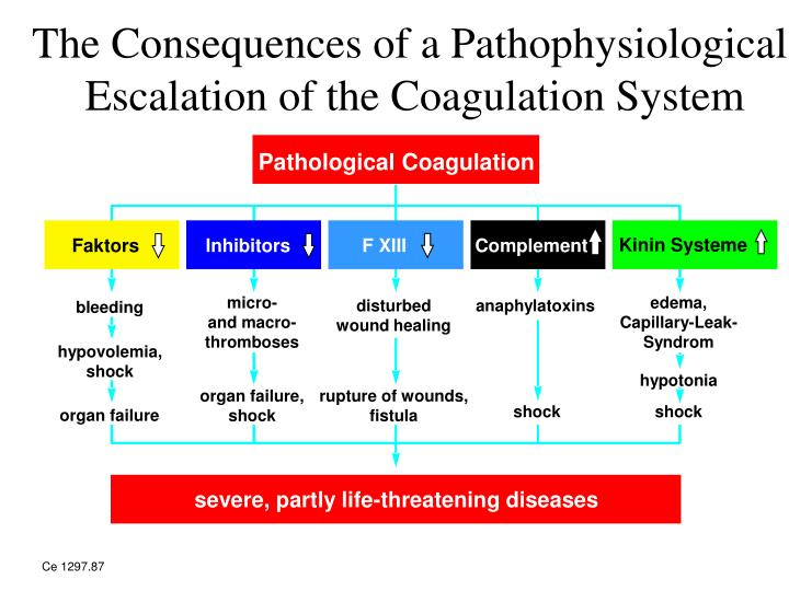 The Consequences of a Pathophysiological