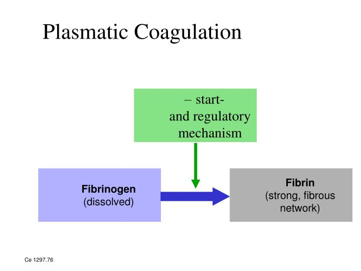 Plasmatic Coagulation