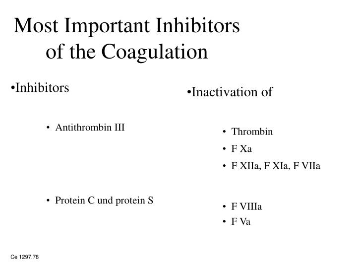 Most Important Inhibitors