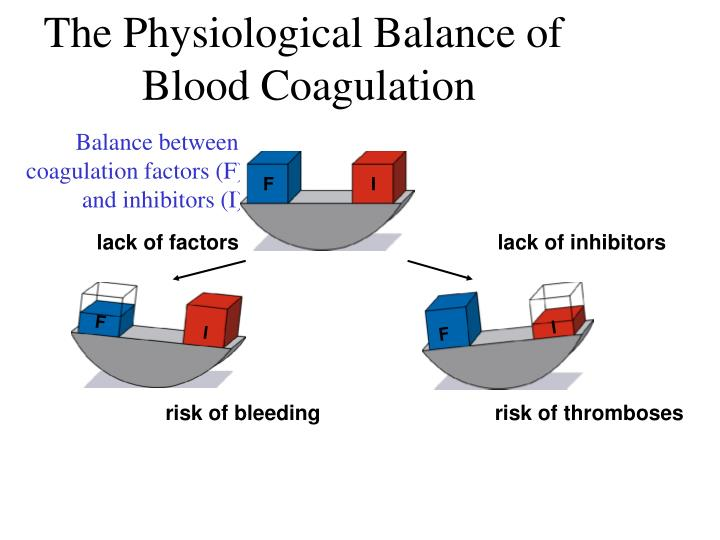The Physiological Balance of