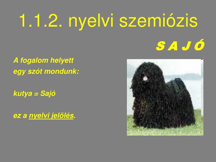 1.1.2. nyelvi szemiózis