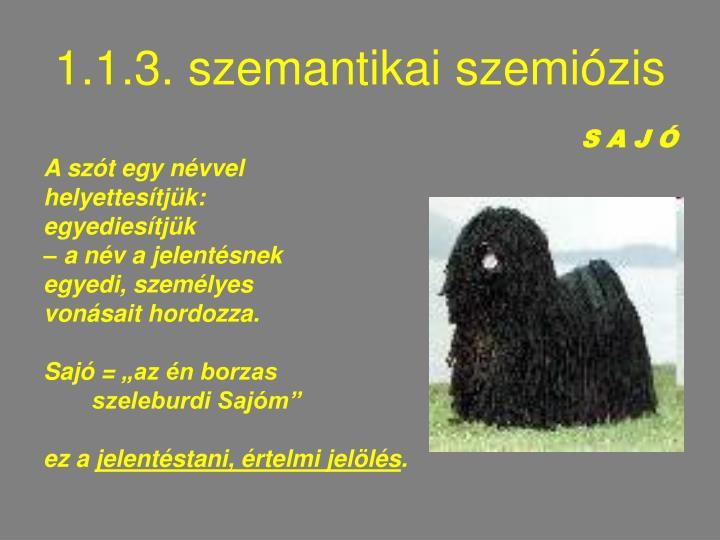 1.1.3. szemantikai szemiózis