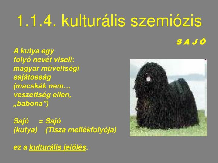 1.1.4. kulturális szemiózis