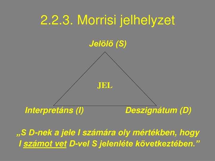 2.2.3. Morrisi jelhelyzet