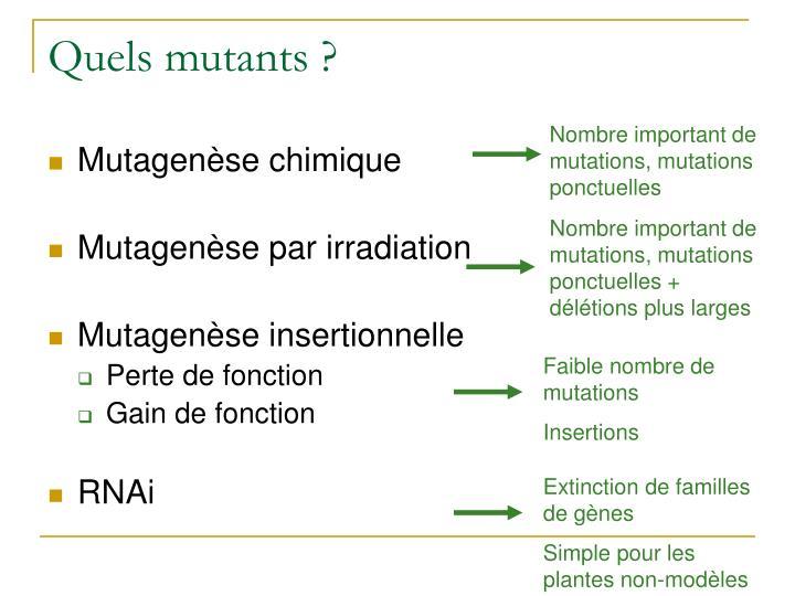Nombre important de mutations, mutations ponctuelles