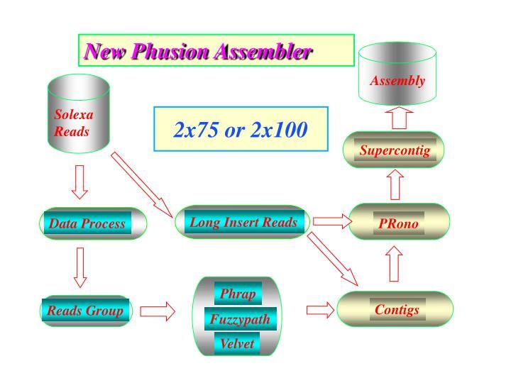 New Phusion Assembler