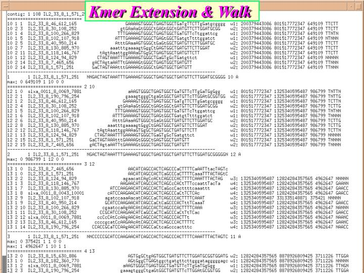 Kmer Extension & Walk