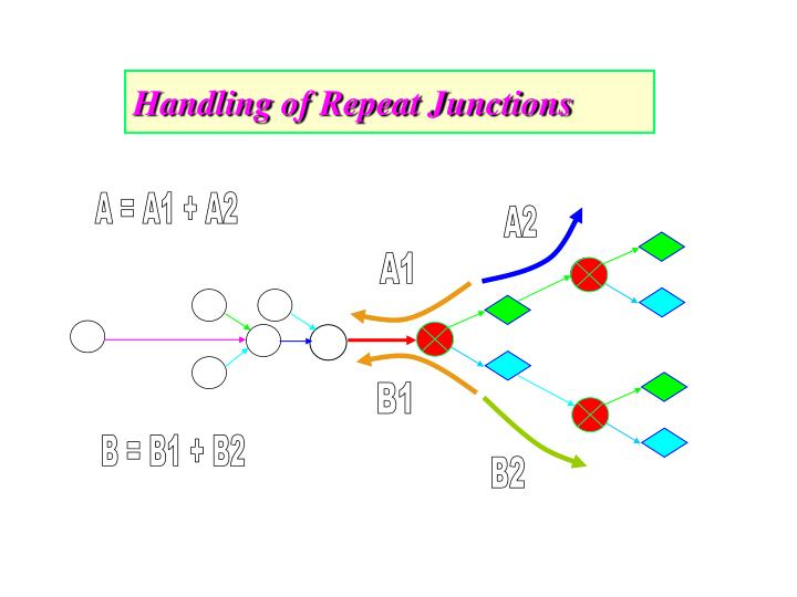 Handling of Repeat Junctions