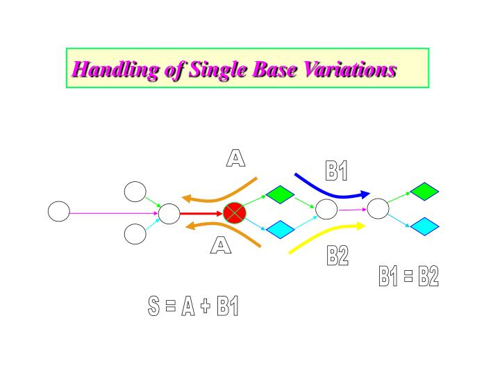 Handling of Single Base Variations