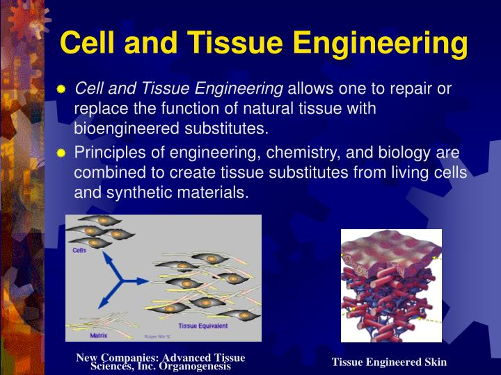 Cell and Tissue Engineering