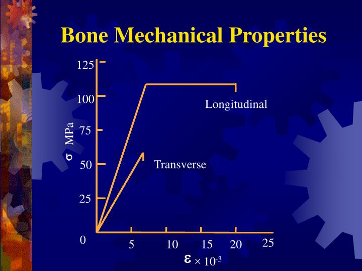 Bone Mechanical Properties