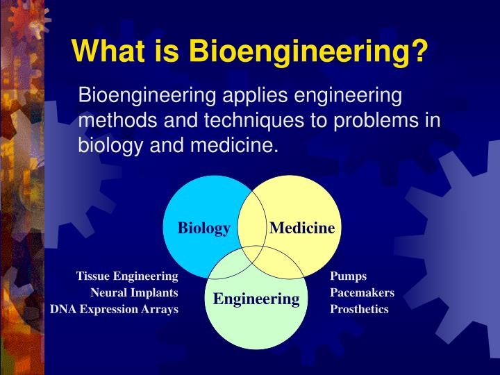 What is bioengineering