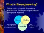 what is bioengineering