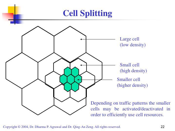 Cell Splitting